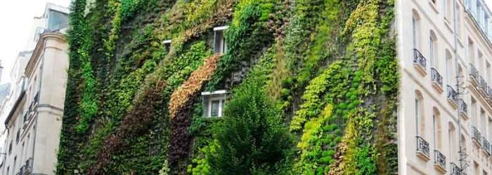 Muros verdes eco arquitectura dise o de interiores for Muros verdes arquitectura
